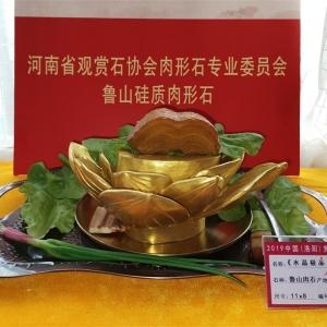 河南省肉形石文化研究院简介