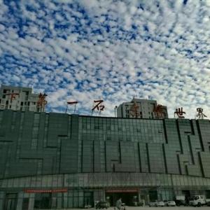 致:上海俞莹老师、宦振宏老师邀请函